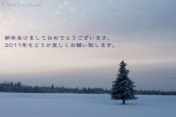 2011newyear_blog