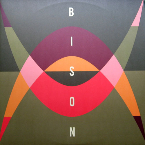Bison01