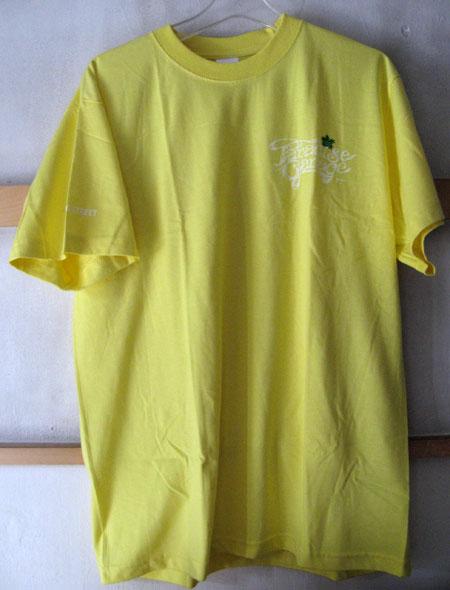 Larry2015_yellow01