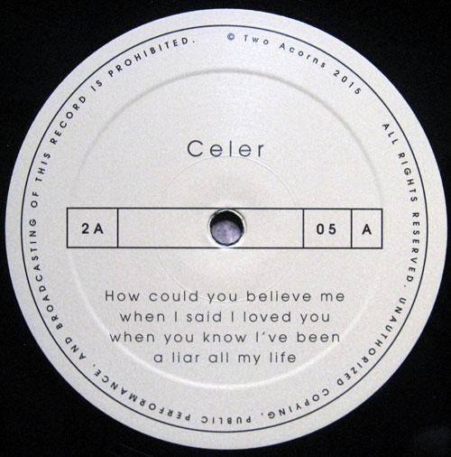 Celer_how03